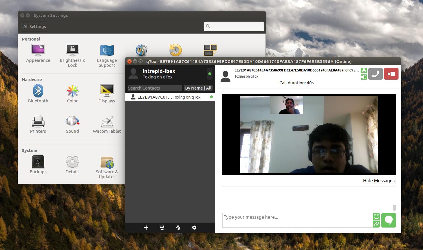 qtox skype alternative